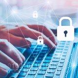 Estejam os dados em rede ou anotados em um bloco de papel, é necessário garantir a segurança da informação do consumidor